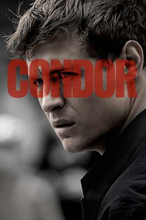 Poster: Condor