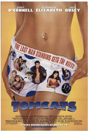 Poster: Tomcats