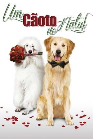 Poster: A Christmas Wedding Tail