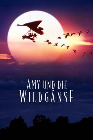 Poster: Amy und die Wildgänse
