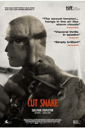 Poster: Cut Snake