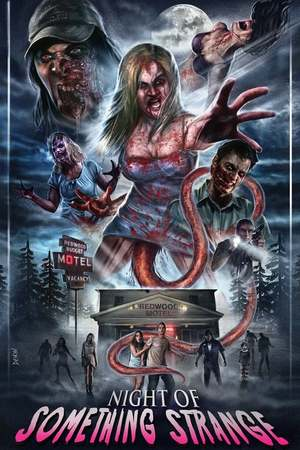 Poster: Night of Something Strange