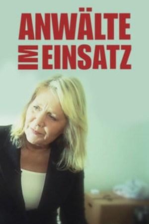 Poster: Anwälte im Einsatz