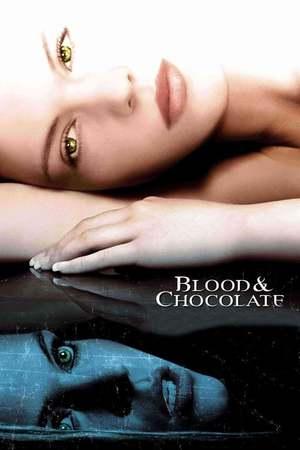 Poster: Blood & Chocolate - Die Nacht der Werwölfe