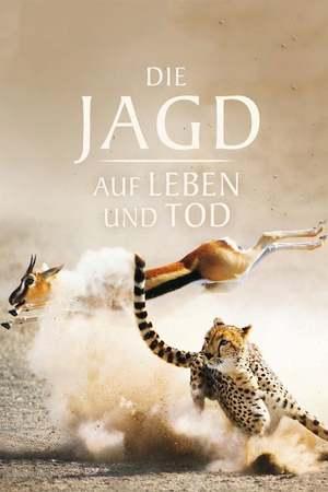 Poster: Die Jagd – Auf Leben und Tod