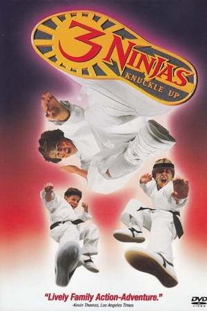 Poster: 3 Ninjas Fight & Fury