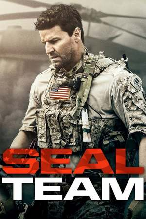 Poster: SEAL Team