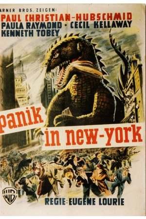 Poster: Panik in New York