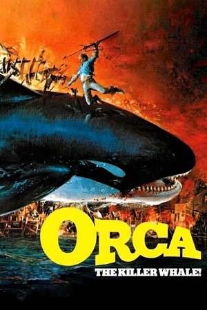 Poster: Orca - Der Killerwal