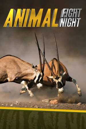 Poster: Animal Fight Club