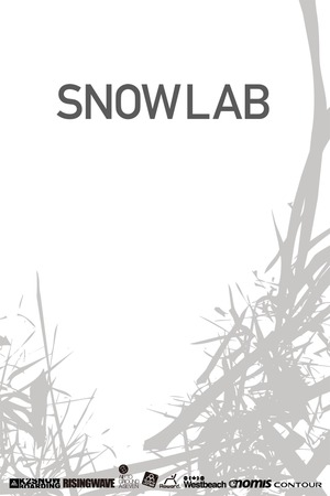 Poster: Snow Lab