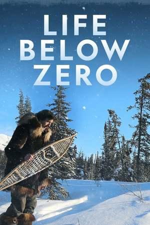 Poster: Life Below Zero