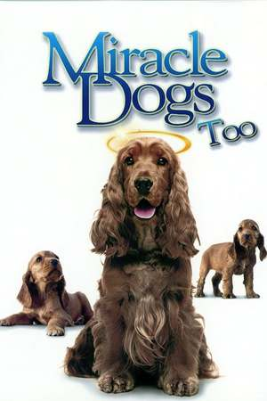 Poster: Miracle Dogs Too