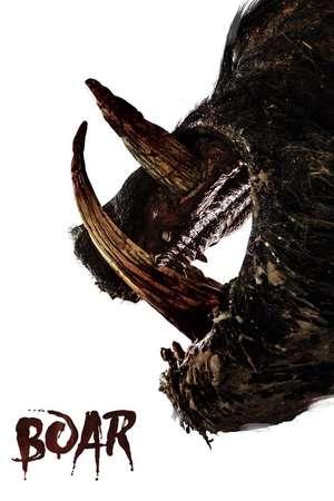 Poster: Boar