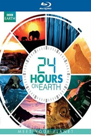 Poster: 24 Stunden