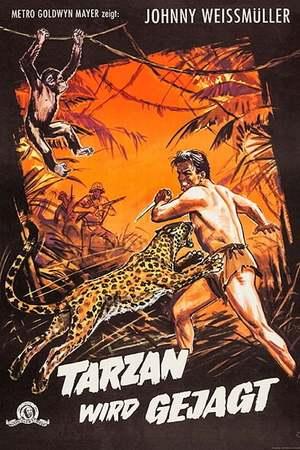 Poster: Tarzan wird gejagt