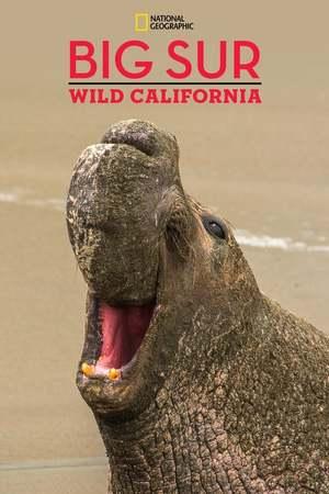 Poster: Big Sur-Wild California