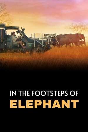 Poster: In den Fußstapfen von Elefanten