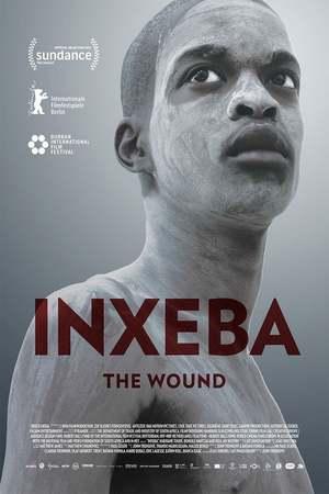 Poster: Die Wunde
