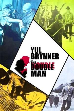 Poster: Der doppelte Mann