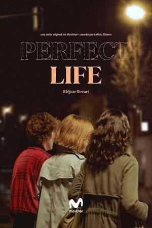 Poster: Vida Perfecta
