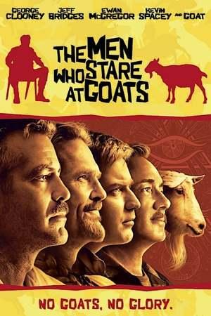 Poster: Männer die auf Ziegen starren