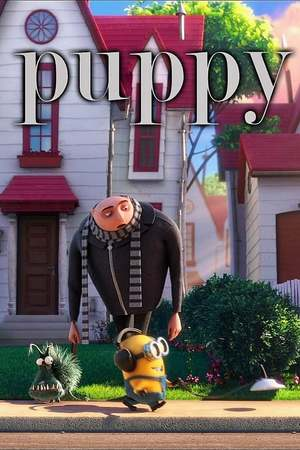 Poster: Puppy