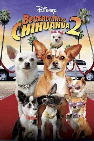 Poster: Beverly Hills Chihuahua 2