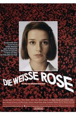 Poster: Die weiße Rose