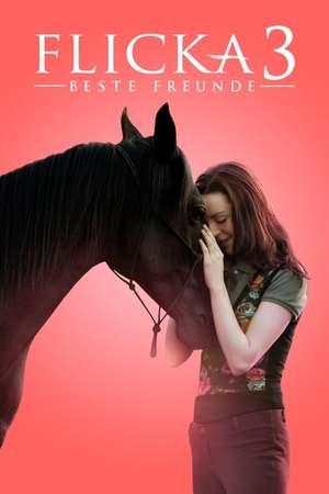Poster: Flicka 3 - Beste Freunde