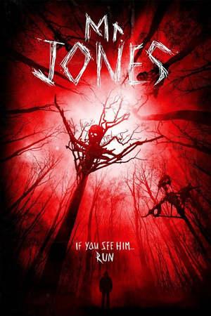 Poster: Mr. Jones