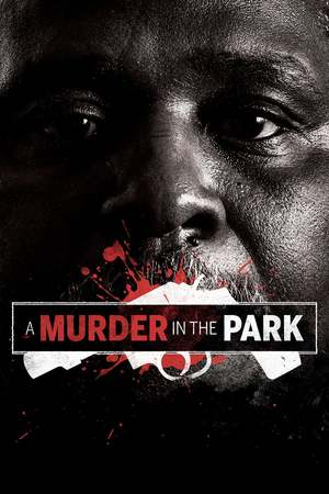 Poster: A Murder in the Park
