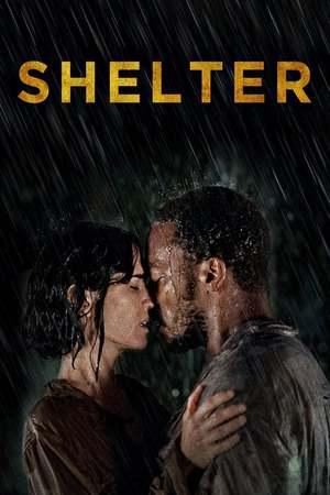 Poster: Shelter