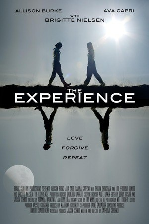 Poster: The Experience