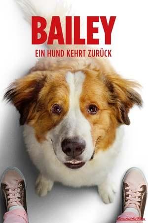 Poster: Bailey - Ein Hund kehrt zurück