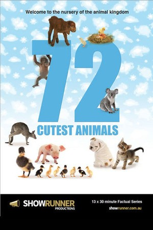 Poster: 72 Cutest Animals