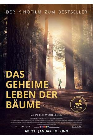 Poster: Das geheime Leben der Bäume