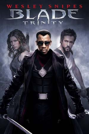 Poster: Blade: Trinity