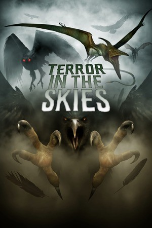 Poster: Terror in the Skies