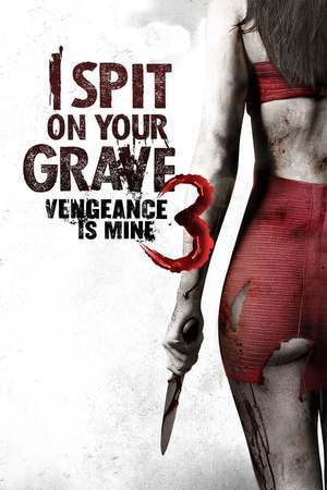 Poster: I Spit on Your Grave 3