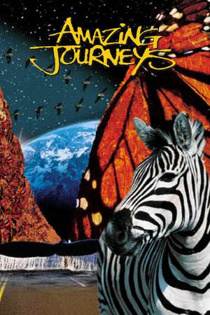 Poster: Amazing Journeys - Wunderbare Welten