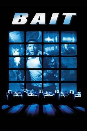 Poster: Bait - Fette Beute