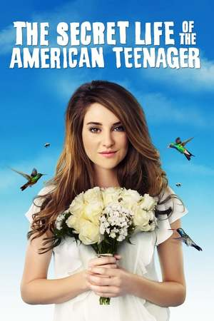 Poster: The Secret Life of the American Teenager