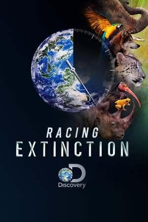 Poster: Racing Extinction - Das Ende der Artenvielfalt ?