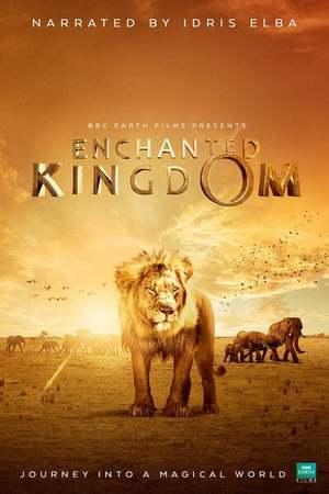 Poster: Afrika - Das magische Königreich