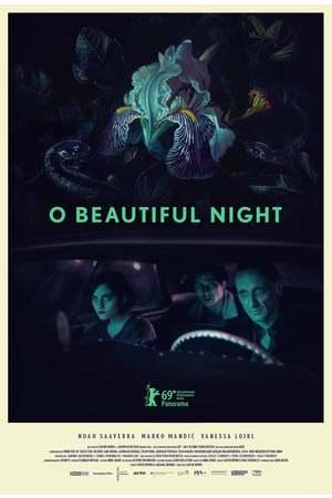 Poster: O Beautiful Night