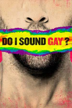 Poster: Do I Sound Gay?