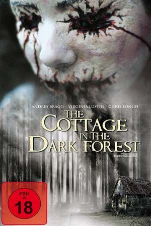 Poster: The Cottage in the Dark Forest