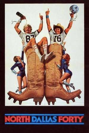 Poster: Die Bullen von Dallas