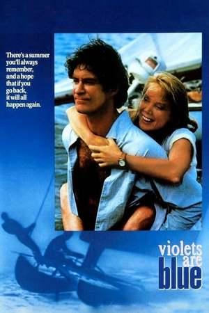 Poster: Liebe ist nur eine Illusion